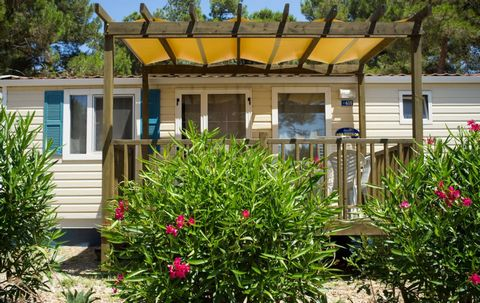 The camping village is located in Croatia, a few km from Mali (Mali Losini) on the island of Losini, opposite the island of Krk in the Archipelago of the Kvarner. The campsite, located at the narrowest point of the island, is set in a natural environ...