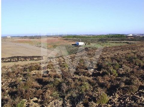 Excellent farm located at the entry of Vila do Bispo (800 meters Northwest), close to the the municipal road 1265 - links Vila do Bispo - Castelejo Beach) inside the Natural Park of