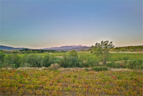 This is a pure gem this Domaine with 40ha of productive vineyards and comprising 2000 m2 of buildings on 1.2ha of land with pool, including a renovated private main house offering 4 ensuite, 2 lounges, a separate equipped kitchen with dining area, at...