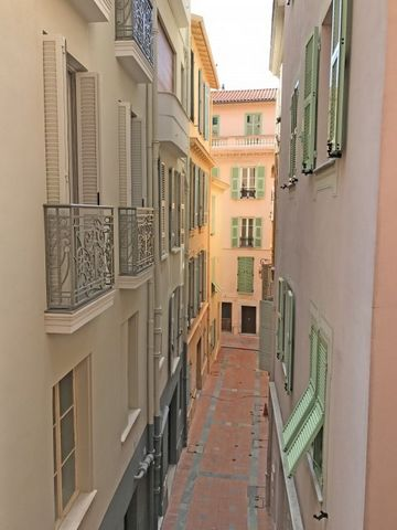 Studio apartment located in a special location in Monaco-Ville in one of its most important streets, the well-structured studio includes a large living room with a modern independent kitchen, wooden floors and a bathroom with shower and toilet. The M...