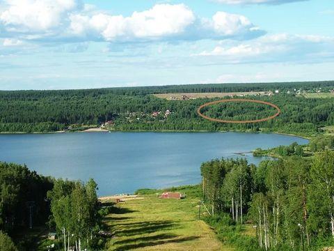 Участок на озере Красном. Расположен в деревне Светлое Приозерского района. Вблизи горнолыжных курортов
