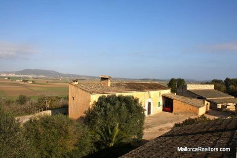 Country estate of 57 hectares with buildings located between Vilafranca de Bonany and Felanitx. Currently being used for cattle rearing and almond and fig production. Due to its size, the quality of the soil and its location, this estate has enormous...