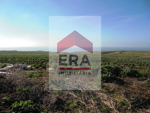 Rustic Plot of land in São Bernardino. with 71.520 sq.m of total area. About 35% of its area is inserted in agricultural spaces, integrated in the National Agricultural Reserve. Inserted in Special Touristic Development Area (Defined by the Municipal...