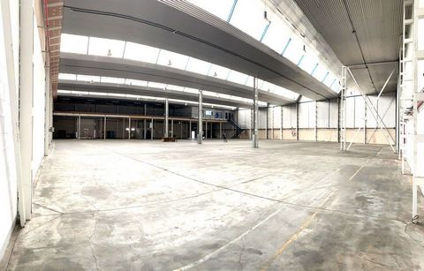 Industrial Warehouse for rent in Alovera, with 2 and508 m2.