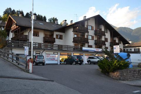 The residence is situated in the old picturesque town centre of Cavalese (altitude 1000 m). This residence is just a few steps away from shops, restaurants, the ice skating rink, the cable car to the Cermis ski slopes, the public swimming pool. Facil...