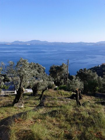 Land for sale in Nisaki Corfu Greece 3 080 sq m. Building construction 400 sq m. With road, electriciti woter. 160 m from the sea. 400 m from the 3 beautifuls beach. Turistic area. Very panoramic. All documentacion is OK. Privat seller. Contact; stud...