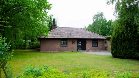 Holiday park Grafschaft Bentheim is located near the town of Uelsen, only 4 kilometers from the Dutch border, in the wooded area of the county of Bentheim. The gently sloping landscape offers many opportunities for extensive walking and cycling. The ...